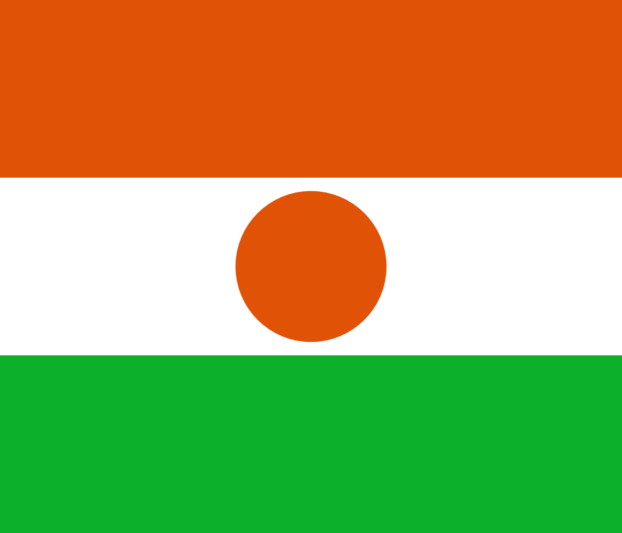 Best Niger Smart DNS Proxy service