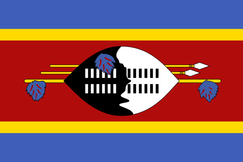 Best Swaziland Smart DNS Proxy service