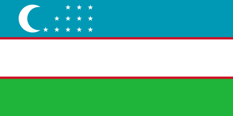 Best Uzbekistan Smart DNS Proxy service