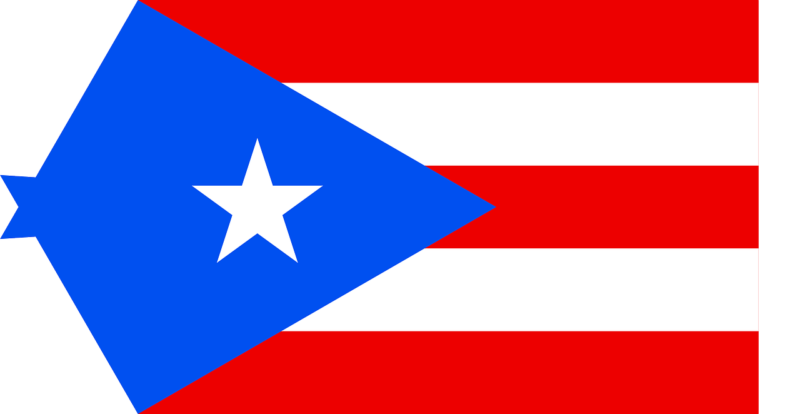 Best Puerto Rico Smart DNS Proxy service